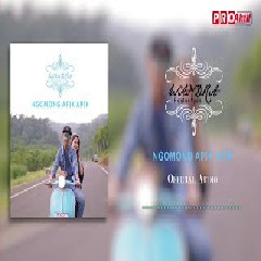 Download Lagu Wandra - Ngomong Apik Apik Mp3