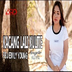 Download Lagu FDJ Emily Young - Kacang Lali Kulite (Reggae Version) Mp3